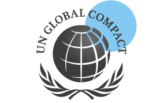 UN Global Compact LEAD Company
