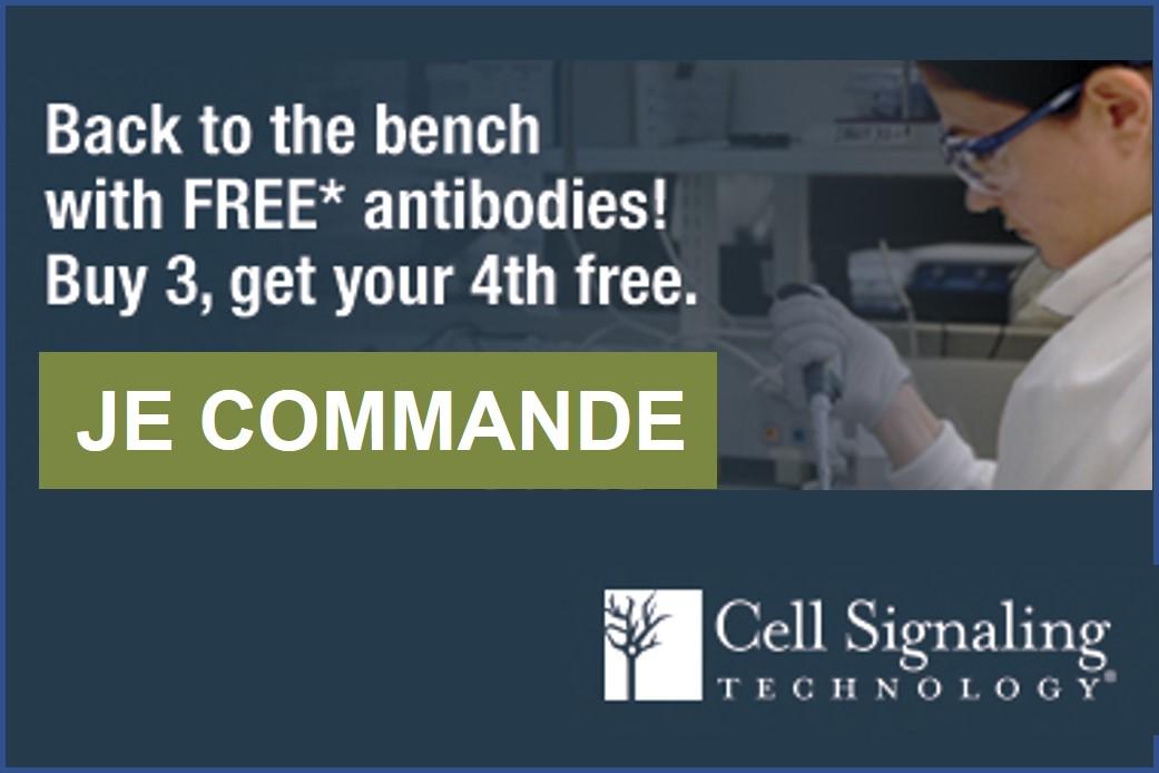 Offre sur les anticorps CST