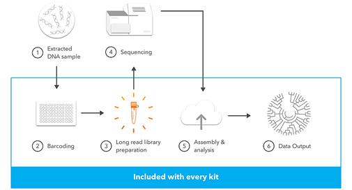 Kit LoopSeq Microbiome 16S - Séquençage des régions variables des gènes 16S et 18S