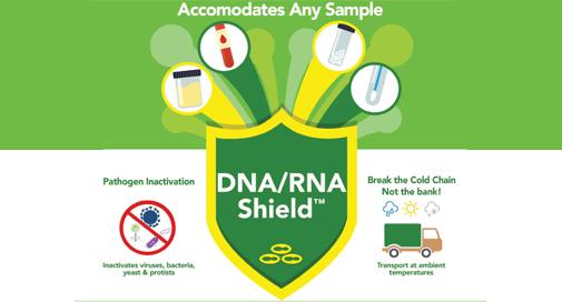 stabilisation des ADN et des ARN dans tous les échantillons, DNA/RNA Shield™