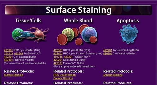 Contrôle qualité des anticorps Biolegend pour la cytométrie