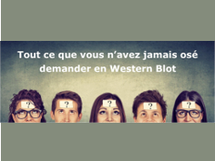 Question/réponse en western blot